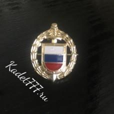 Петлицы и эмблемы для кадет ФСО золотые