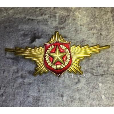 Рота почетного караула сухопутые войска. Нагрудный знак